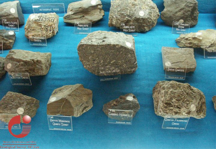 GEOL 104 FC: Rocks and Fossils